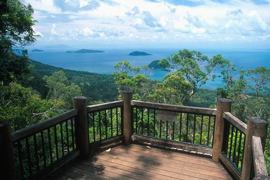 Dunk Island Holidays: Mission Beach Rainforest Walks