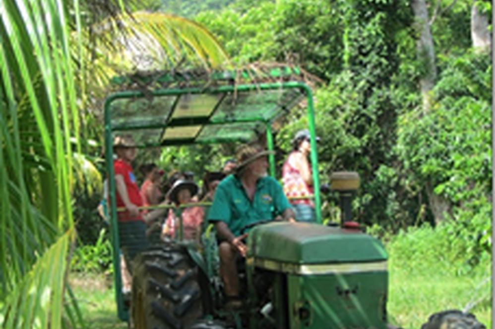 Dunk Island Holidays: Mission Beach Tours • Foodies- Exotic Fruit Farm Tour
